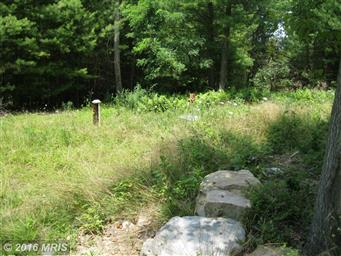 594 CRYSTAL VIEW DR Photo #4