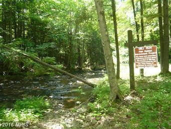 851 Mill Run Road Photo #2