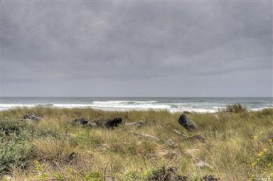 15300 Irish Beach Drive Photo #17