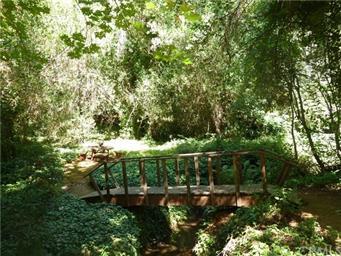 5969 Pine View Drive Photo #5