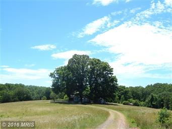 21465 Countryside Lane Photo #13