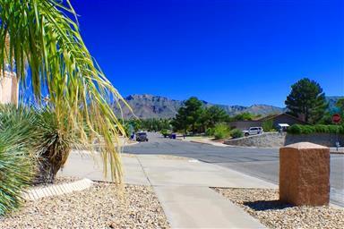 6701 Camino Fuente Drive Photo #4