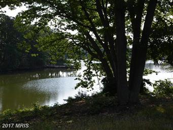 239 Eagles Nest Lane Photo #3