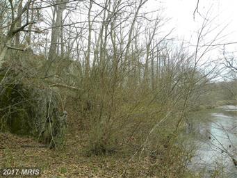 794 Turkey Ridge Road Photo #28