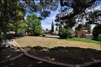 484 Oak Tree Court Photo #43