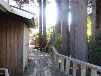 144 Woodland Drive Photo #32