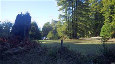26101 Spruce Lane Photo #1