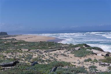 236 Monterey Dunes Way Photo #5