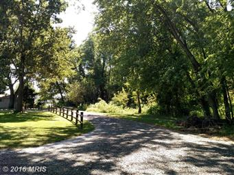 22056 Kelleys Park Road Photo #27