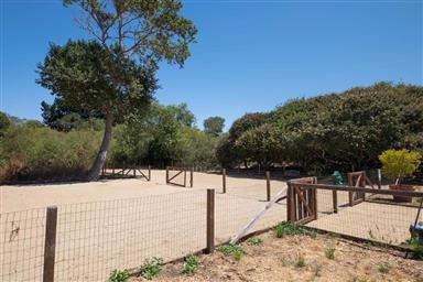 131 Hacienda Carmel Photo #20