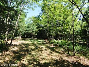 300 Waterberry Dr Photo #6