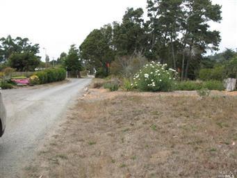 18740 Hare Creek Terrace Photo #45