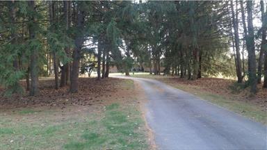 708 Meadow Brook Lane Photo #5