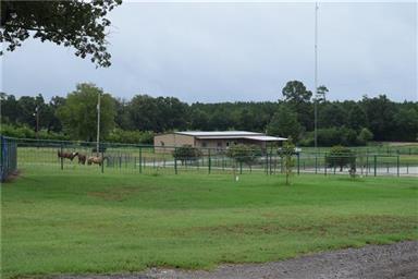 814 County Road 2906 Photo #18
