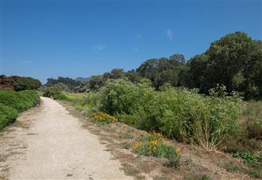 131 Hacienda Carmel Photo #30