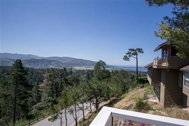 25140 Pine Hills Drive Photo #26