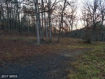 7291 Fort Ashby Road Photo #27