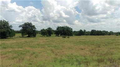 TBD Farm Road 1500 Photo #16