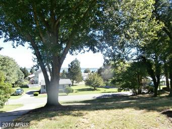 42145 Ridge Road Photo #28