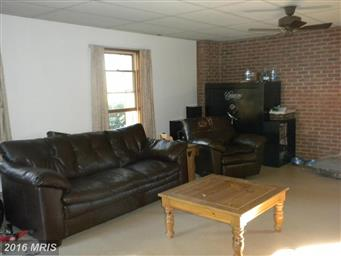 110 Courtland Way Photo #22