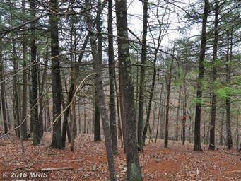 3191 Hunting Ridge Road Photo #9