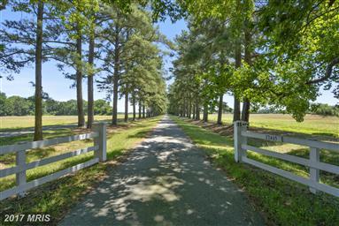 27465 Southside Island Creek Road Photo #29