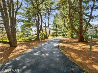 8916 Marengo Farm Road Photo #2
