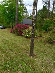331 Plantation Drive Photo #19
