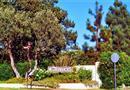 10 Aspen Way, Rolling Hills Estates, CA 90274