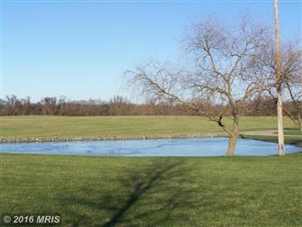 13744 Still Pond Rd Photo #25