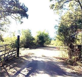 470 County Road 2560 Photo #7