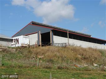 13732 Hollowell Church Road Photo #5