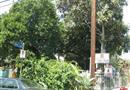 229 W 28th Street, Los Angeles, CA 90007