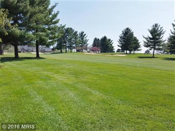 11435 Country Hill Court Photo #28