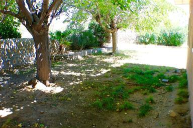 6701 Camino Fuente Drive Photo #33