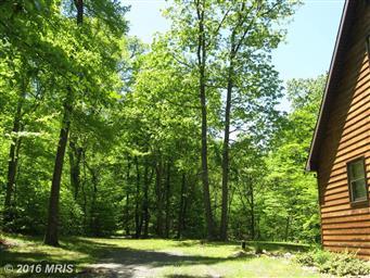 171 Bob White Trail Photo #5
