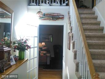 5711 Green Cove Drive Photo #13