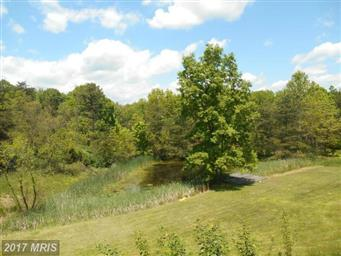 213 Butcher Hollow Road Photo #20