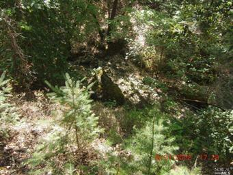 468 Pine Ridge Rd Photo #12