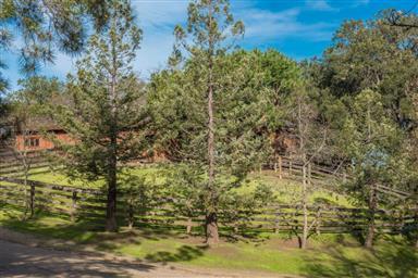 1 Buck Mountain Road Photo #37