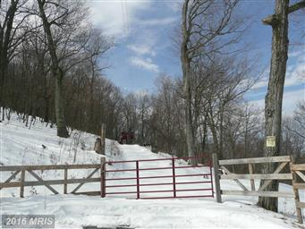 6 Off Route 220 High Knob Photo #23