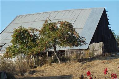 26301 Albion Ridge Road Photo #1