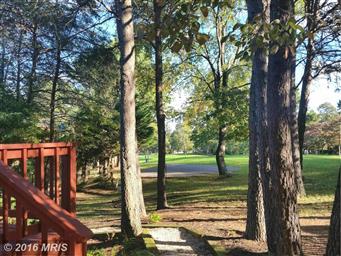 559 Tecumseh Trail Photo #9