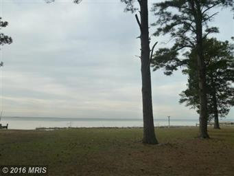 6208 Twin Point Cove Road Photo #4