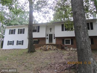 45594 Ford Drive Photo #19