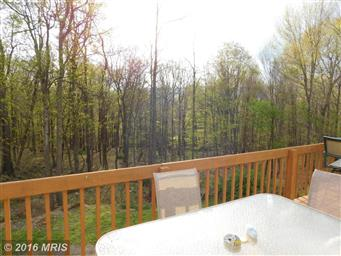 14600 Scenic Hillside Drive Photo #7