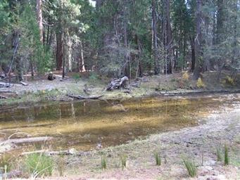 40 AC Chiquito Creek Photo #32