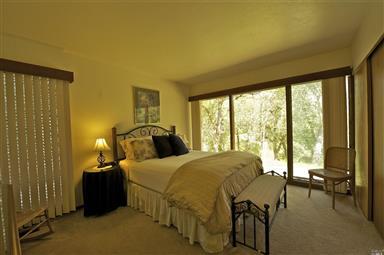 501 Vichy Hills Drive Photo #25