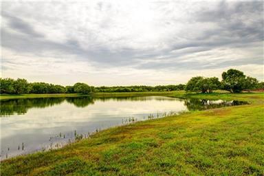 1026 County Road 365 Photo #15