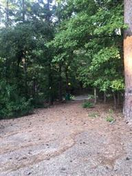 1073 Winding Trail Photo #30